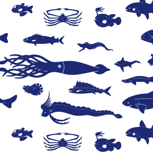 15.深海魚の大群